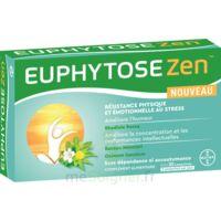 Euphytosezen Comprimés B/30 à Hendaye