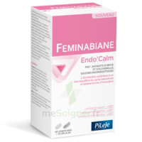 Pileje Feminabiane Endo'calm Comprimés + Gélules B/60+30 à Hendaye