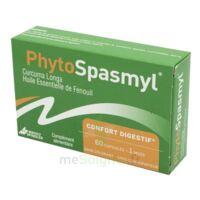 Phytospasmyl Caps B/60 à Hendaye