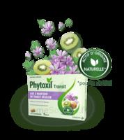PHYTOXIL TRANSIT Comprimés B/20 à Hendaye