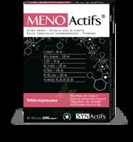 Synactifs Menoactifs Gélules B/60 à Hendaye