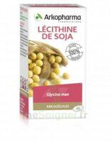Arkogélules Lécithine de soja Caps Fl/150 à Hendaye