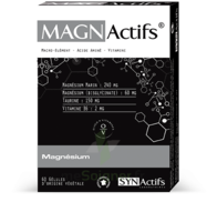 Synactifs Magnactifs Gélules B/60 à Hendaye