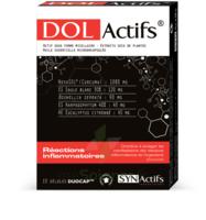 Synactifs Dolactifs Gélules duocaps B/15 à Hendaye