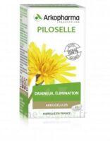 Arkogélules Piloselle Gélules Fl/45 à Hendaye