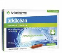 Arkocean Magnesium Marin Solution buvable caramel 20 Ampoules/10ml à Hendaye