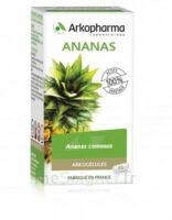 Arkogélules Ananas Gélules Fl/45 à Hendaye