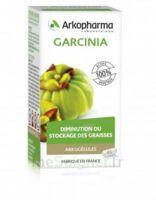Arkogélules Garcinia Gélules Fl/45 à Hendaye