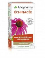 Arkogélules Echinacée Gélules B/45 à Hendaye