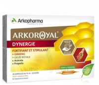 Arkoroyal Dynergie Ginseng Gelée royale Propolis Solution buvable 20 Ampoules/10ml à Hendaye