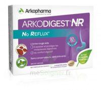 Arkodigest No Reflux NR Comprimés à croquer B/16 à Hendaye