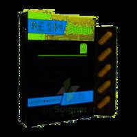 Synactifs Respigreen Bio Gélules B/10 à Hendaye