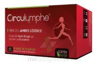 Santé Verte Circulymphe Triple Actions B/60 à Hendaye