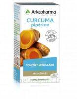 Arkogelules Curcuma Pipérine Gélules Fl/45 à Hendaye