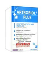 Ineldea Artrobiol Plus 120 Gélules à Hendaye