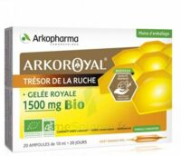 Arkoroyal Gelée royale bio 1500 mg Solution buvable 20 Ampoules/10ml à Hendaye