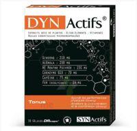 Synactifs Dynactifs Gélules B/30 à Hendaye