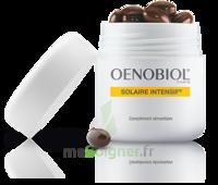 Oenobiol Solaire Intensif Caps peau normale Pot/30 à Hendaye