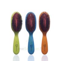 Cartel Brosse cheveux pneumatique Sanglier /1 à Hendaye