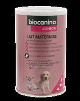 Biocanina Lait poudre maternisé B/400g à Hendaye