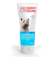 Clément Thékan Shampooing poils blancs T/200ml à Hendaye