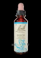 Fleurs de Bach® Original Beech - 20 ml à Hendaye