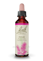 Fleurs de Bach® Original Pine - 20 ml à Hendaye