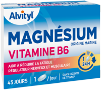 Govital Magnésium Vitamine B6 Comprimés B/45 à Hendaye