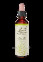 Fleurs De Bach® Original Olive - 20 Ml à Hendaye