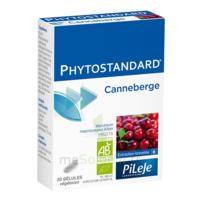 Pileje Phytostandard - Canneberge 20 Gélules Végétales à Hendaye